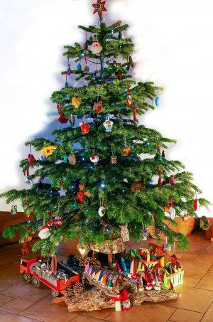 """<span  class=""""uc_style_uc_tiles_grid_image_elementor_uc_items_attribute_title"""" >Sapin de Noël de framboisine décoré uniquement avec des créations en feutrine.</span>"""